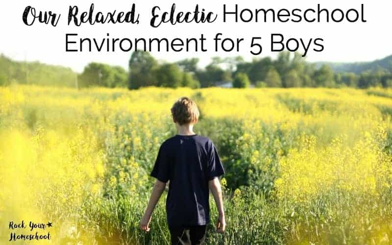 Our Relaxed, Eclectic Homeschool Environment for 5 Boys