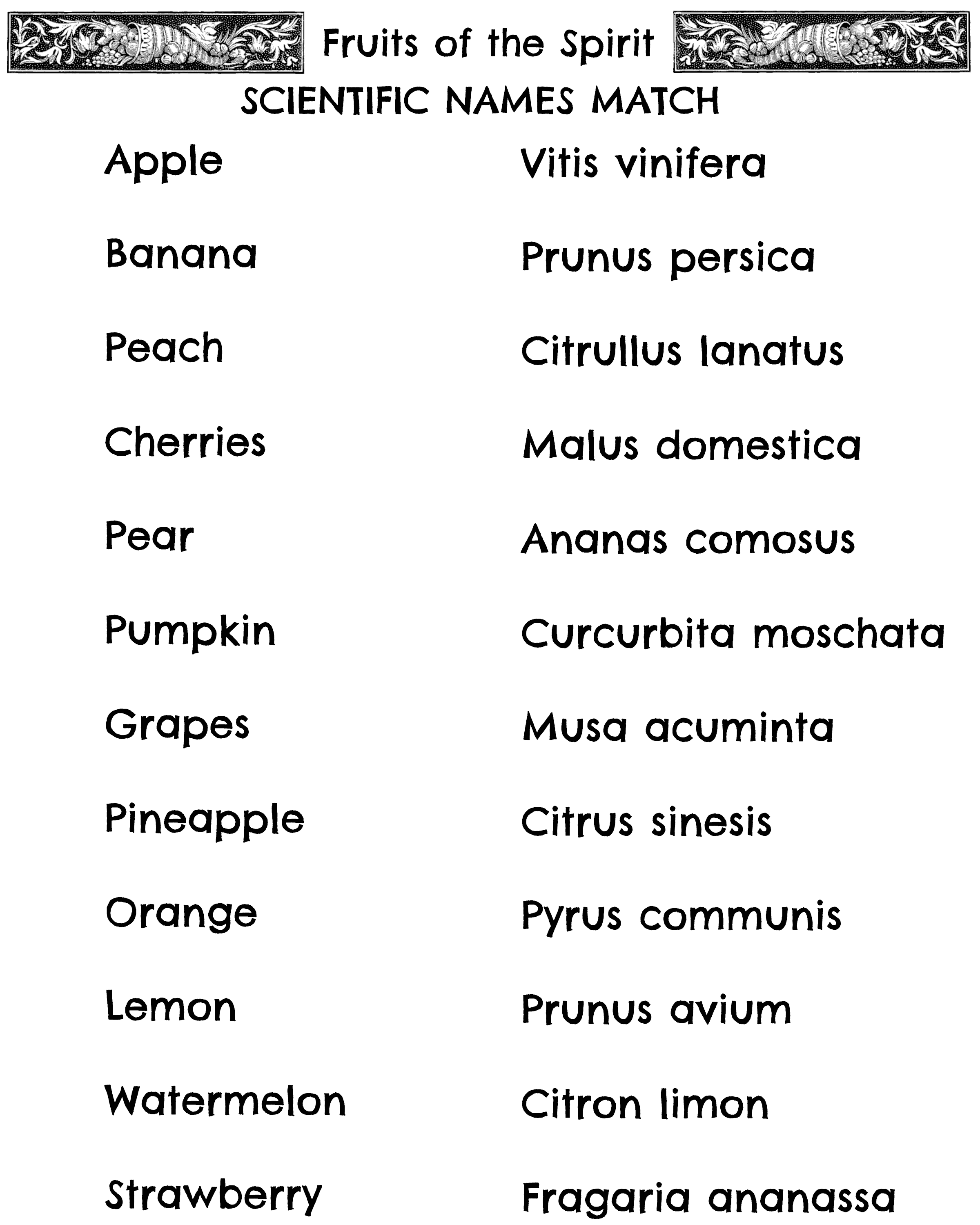 fruits of the spirit scientific names match