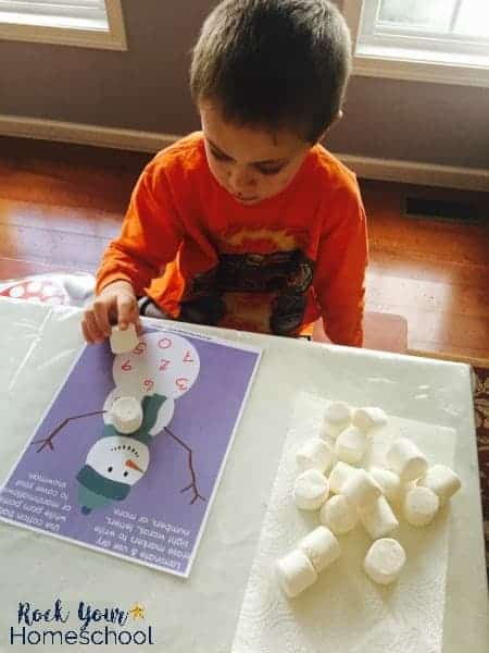 You can use these 6 winter work mats for tons of learning fun with your kids.