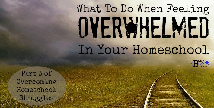 What To Do When Feeling Overwhelmed In Your Homeschool