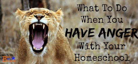 What To Do When You Have Anger With Your Homeschool