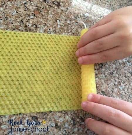 Up close look at how kids can roll their own beeswax candles for fun and easy projects.