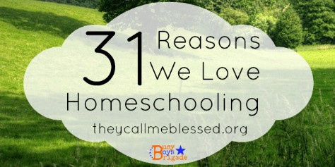 Guest Post For 31 Reasons We Love Homeschooling