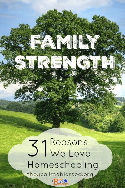 Why We Love Homeschooling-Family Strength