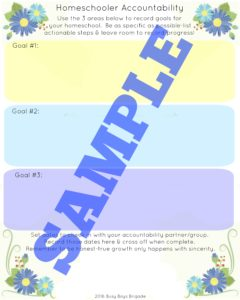 Homeschooler accountability sample of worksheet.