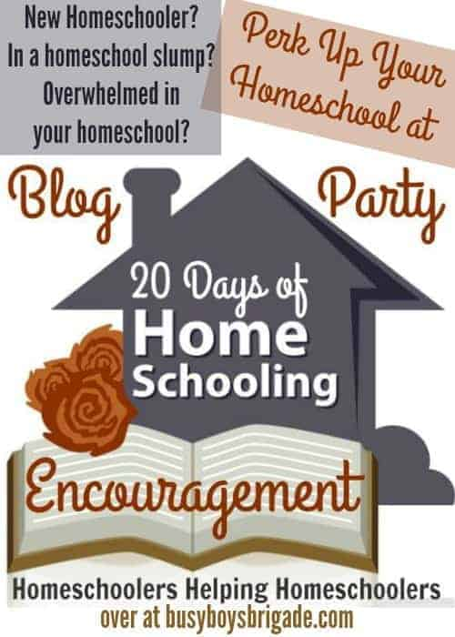 20 Days of Homeschooling Encouragement Blog Party is dedicated to homeschoolers helping homeschoolers. Find support, ideas, tips, resources, stories, & more from real life homeschoolers who have been there & done that!