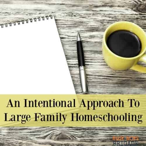 Learn about our intentional approach to large family homeschooling in a guest post shared over at Intentional In Life.