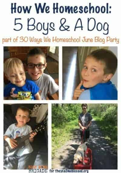 Wonder how we homeschool 5 boys and get it all done? Check out this guest post I wrote for They Call Me Blessed.
