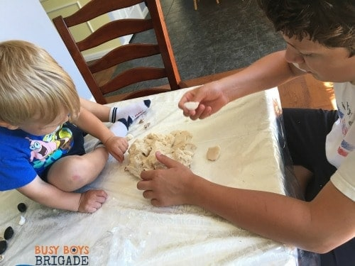 seashell activities Xman Captain