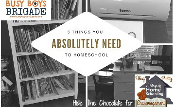 5 Things You ABSOLUTELY Need To Homeschool