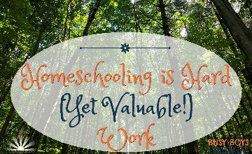 Homeschooling is Hard Yet Valuable Work by Dawn of Lady Dusk provides rich encouragement and support for all homeschoolers.