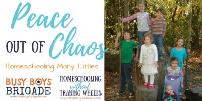 Peace out of Chaos: Homeschooling Many Littles