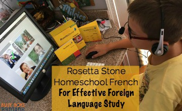 Rosetta Stone Homeschool French For Effective Foreign Language Study