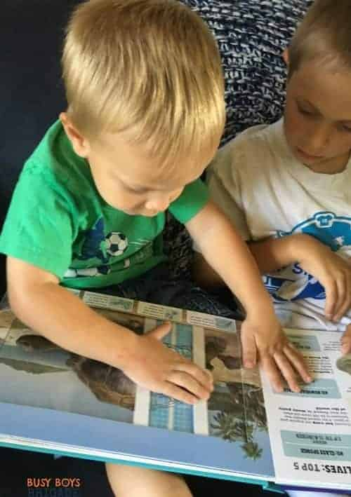 Scanorama books by Silver Dolphin Books are great ways to engage young readers.