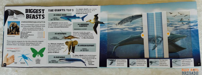 Check out this panoramic picture of Scanorama: Amazing Animals. These interactive books are great for engaging young readers,