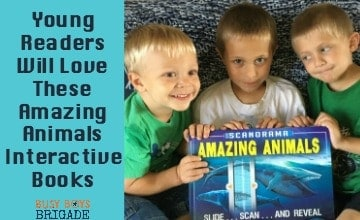 Young Readers Will Love These Amazing Animals Interactive Books