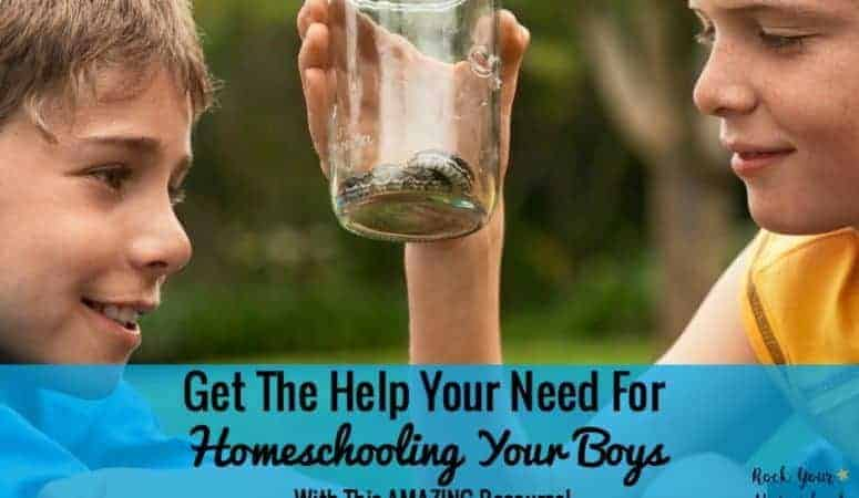 Get The Help Your Need For Homeschooling Your Boys