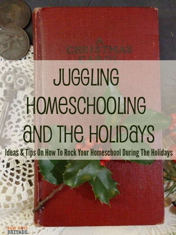 The holidays are quickly approaching! How will you approach homeschooling during this busy time? Get great ideas & tips from Crystal at Sharing Life's Moments on how to rock your homeschool during the holidays.