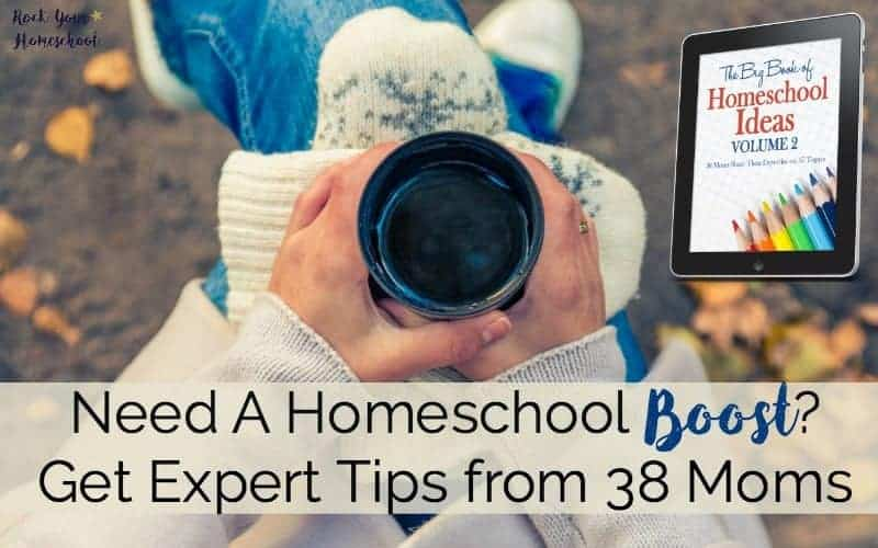 Need A Homeschool Boost? Get Expert Tips from 38 Moms