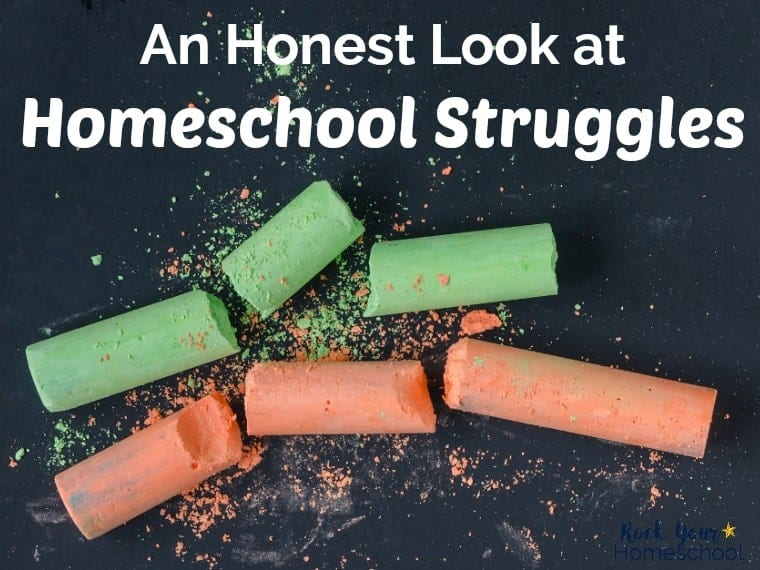 If you feel like you're struggling in your homeschool, know that you're not alone. Find out more & what you can to do to overcome in this series to help homeschool moms.