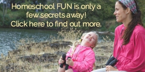 Learn my secrets to being a fun homeschool mom & how to rock your homeschool!