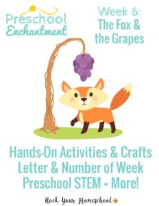 The Fox & the Grapes is week 6 for Preschool Enchantment Unit Studies.