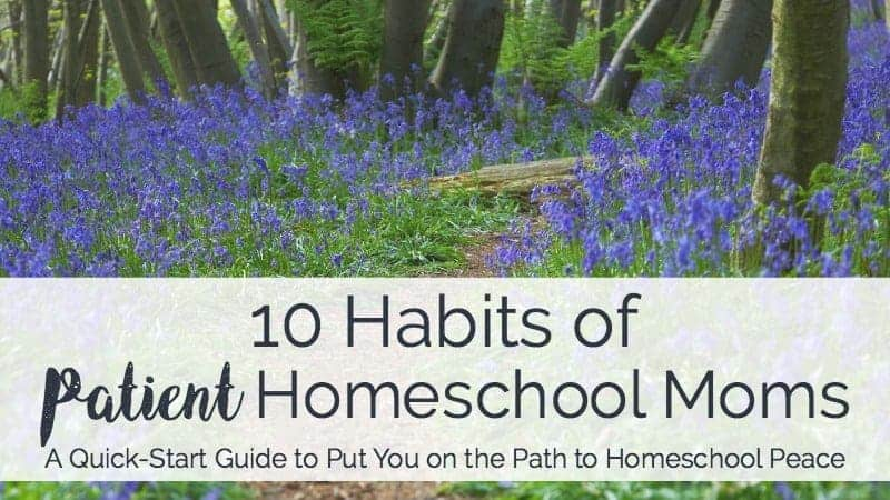 Discover how you can learn and master these 10 habits of patient homeschool moms.
