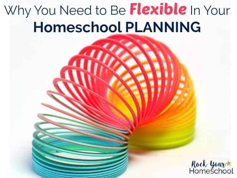 Why You Need to Be Flexible In Your Homeschool Planning