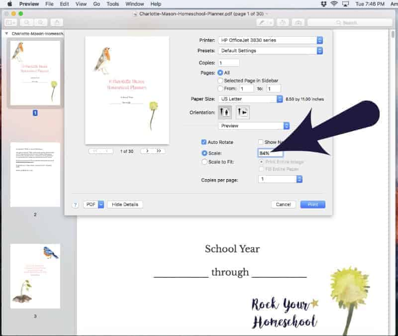 Here is a screenshot guide on how to resize the Charlotte Mason Homeschool Planner pages for your Happy Planner.
