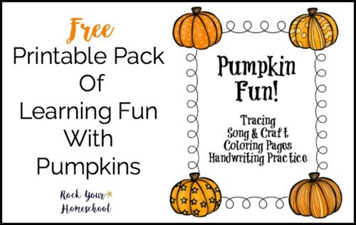 You may like this free printable pack of learning fun with pumpkins if you love these smart spiders!
