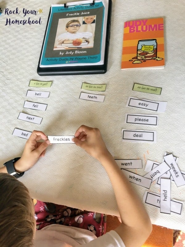 These elementary literature guides from 7Sisters Homeschool are affordable ways to boost your homeschool learning fun.