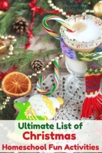 Hot chocolate with whipped cream & rainbow sprinkles in glass mug with rainbow candy cane & scarf, dried orange slice, Christmas cookies, pine, pine cones, lace doily