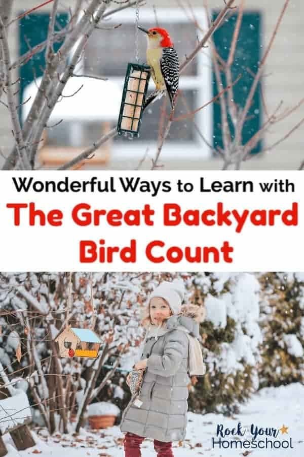 Woodpecker on bird feeder in winter with house in background and young girl with winter coat & hat walking in snow towards colorful bird feeder