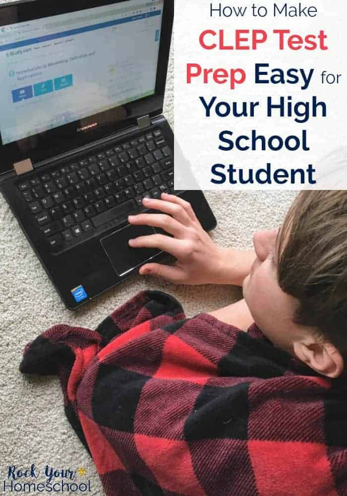 High school student using laptop computer for online video lessons