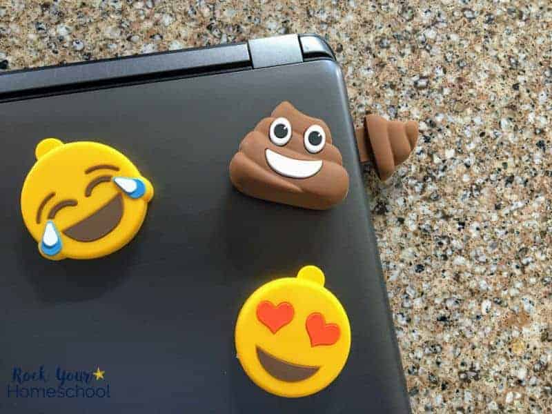 These awesome flash drives are wonderful ways to make online homeschool work fun & engaging.