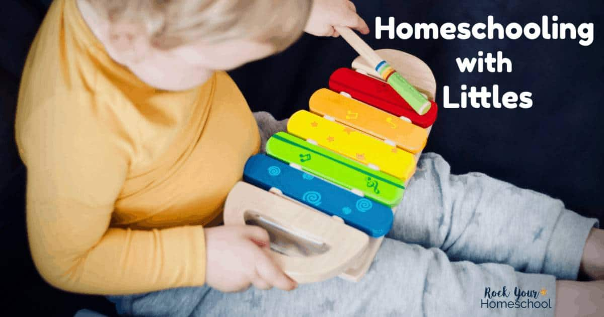 Are you homeschooling with littles? Got questions about if you should homeschool your toddler or when to start homeschool preschool? And what about keeping your sanity when little ones are underfoot? Get answers at Homeschool 101!