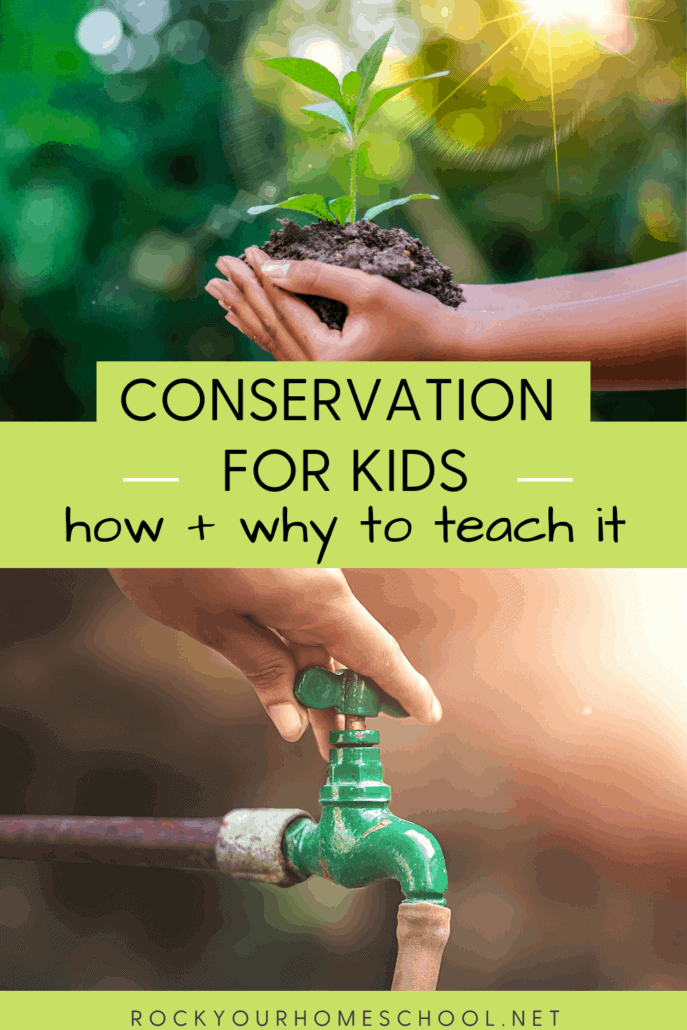 Conservation for Kids: How to Teach It & Why It Is Important