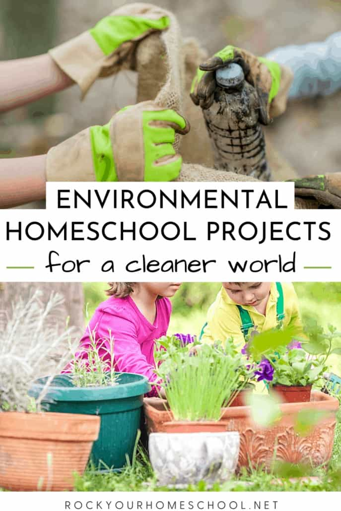 6 Excellent Environmental Homeschool Projects for a Cleaner World