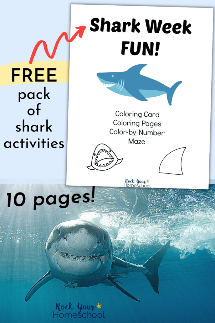 Shark Week Fun cover and shark in the ocean with smile to feature the fantastic fun you'll have with your kids with this free pack of shark week fun activities