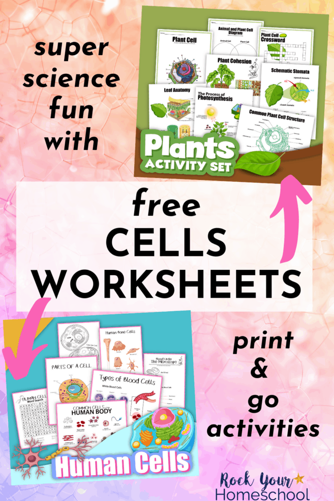 Plant cells activity set and Human cells activity set to feature how you can use these free cells worksheets for super science fun activities