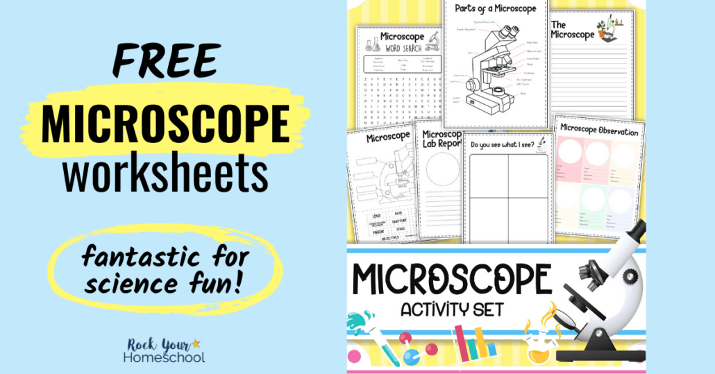 These free microscope worksheets are fantastic for science fun. Grab this pack of 7 pages to boost learning all about microscopes.