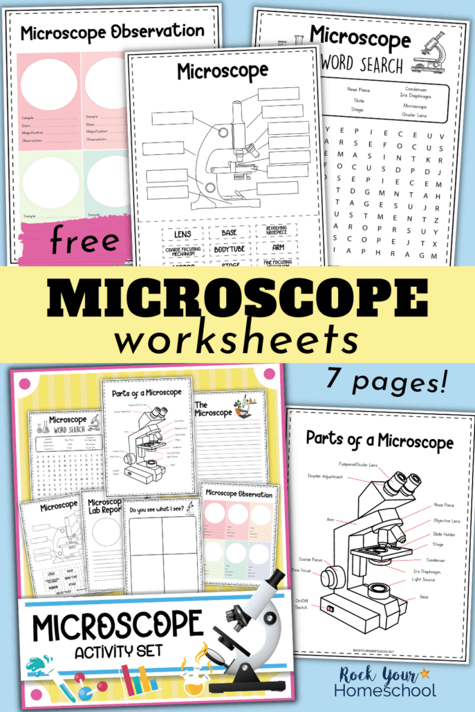 Free Microscope Worksheets for Simple Science Fun for Your Students