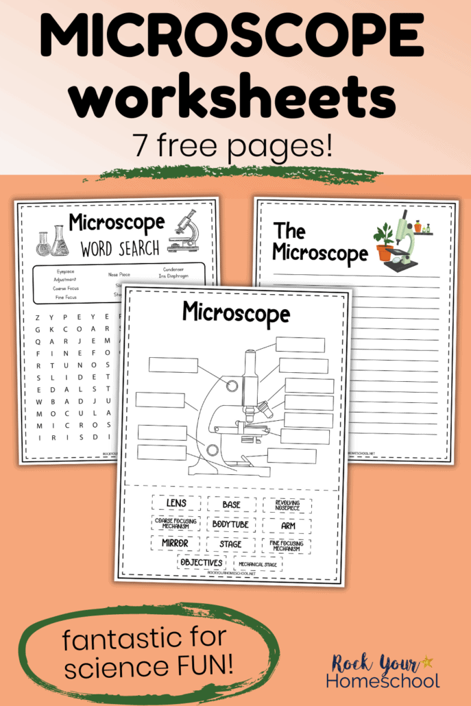 Microscope worksheets for word search, notebooking, cut-and-paste to feature this free set of science printable activities