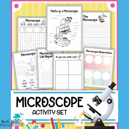 cover for free microscope worksheets set